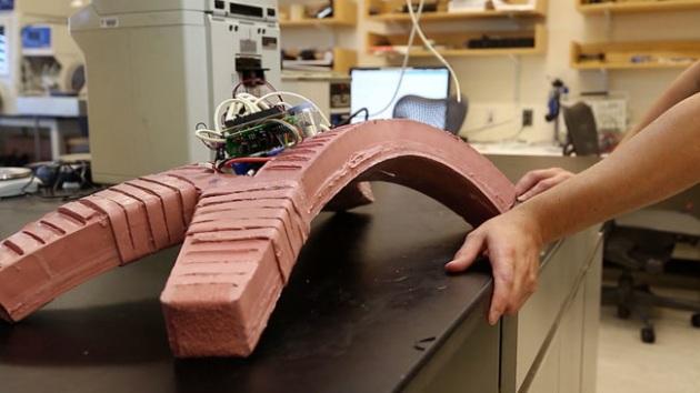 Il robot più resistente del mondo:morbido e indistruttibile