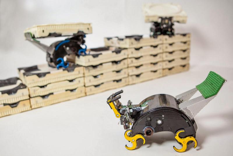 TERMES il robot termite